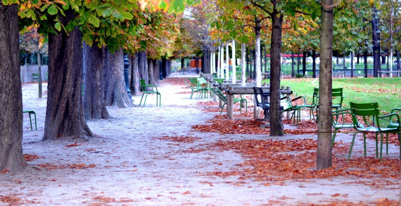 Jardin des Tuileries - L'automne